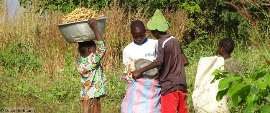 Farm; Ausbildung; Ernährung für Kinder